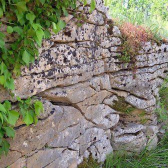 L'eau sculpte le calcaire en élargissant les fissures.