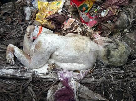 बेटमा में कचरे में मिला बच्ची का शव