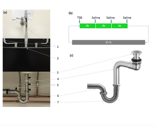 A sinking feeling: misleading headline but interesting paper on tracking spread of microbes in sinks