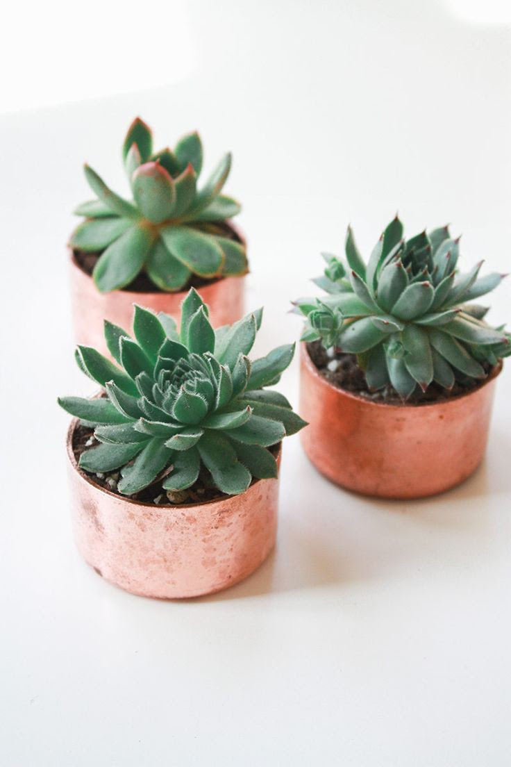 Copper Planter // Julia Kostreva