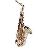 Sax Dakota SDA-XL-110 Professional Alto Saxophone Gold Plated Keys Satin Silver