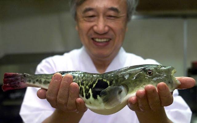 Συναγερμός σε ιαπωνική πόλη για δηλητηριώδες ψάρι που πουλήθηκε κατά λάθος