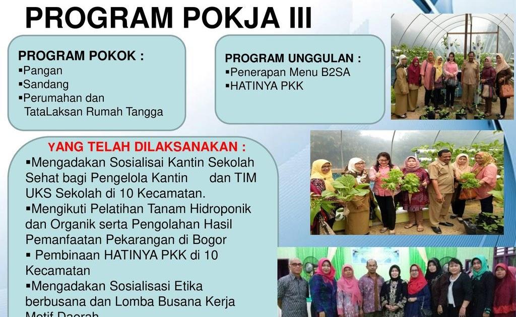 Digunakan untuk mencatat daftar nama anggota tp pkk dan kader pkk di tingkat desa/kelurahan. Bidang Pokja Pkk - Pokja PKK