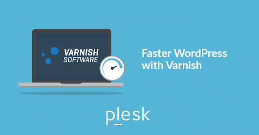 Varnish for WordPress in a Docker container - Plesk