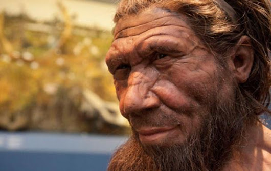 Top Ten Myths about Neanderthals