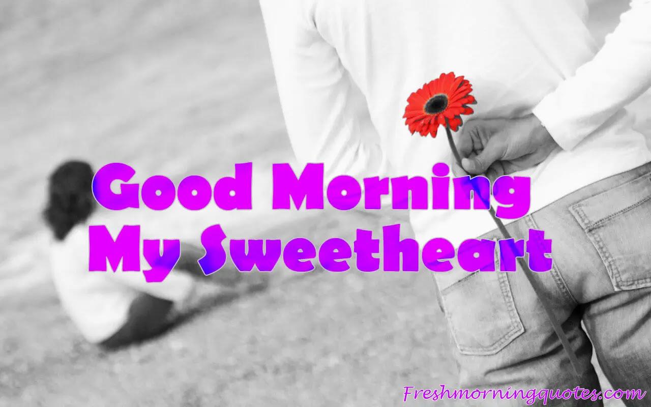 20+ Beautiful Good Morning My Love Images - Freshmorningquotes