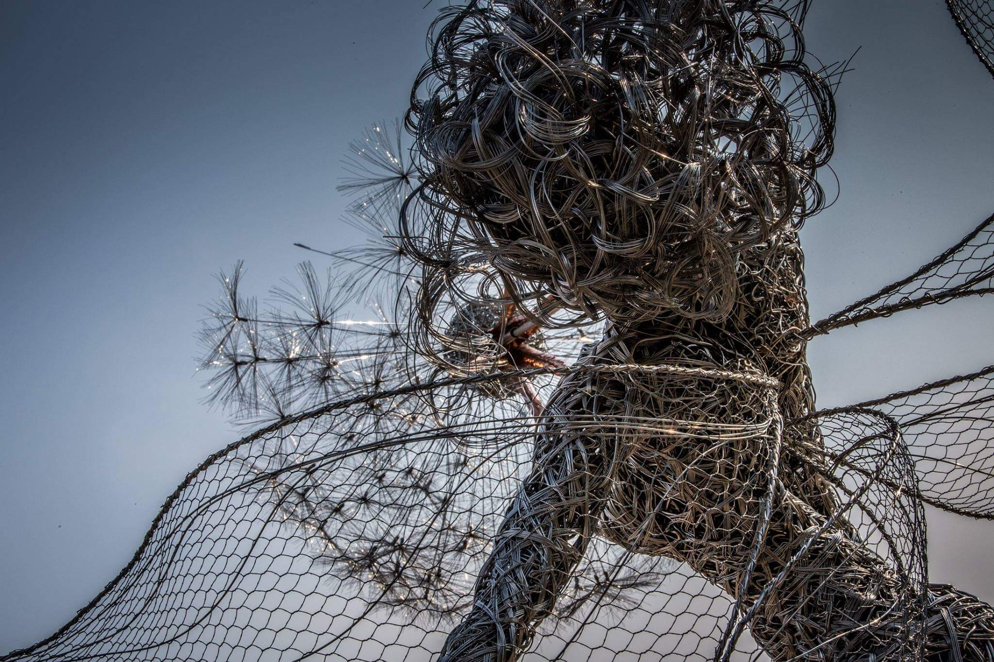 These Fantasy Wire Sculptures By Robin Wight Are From a ...