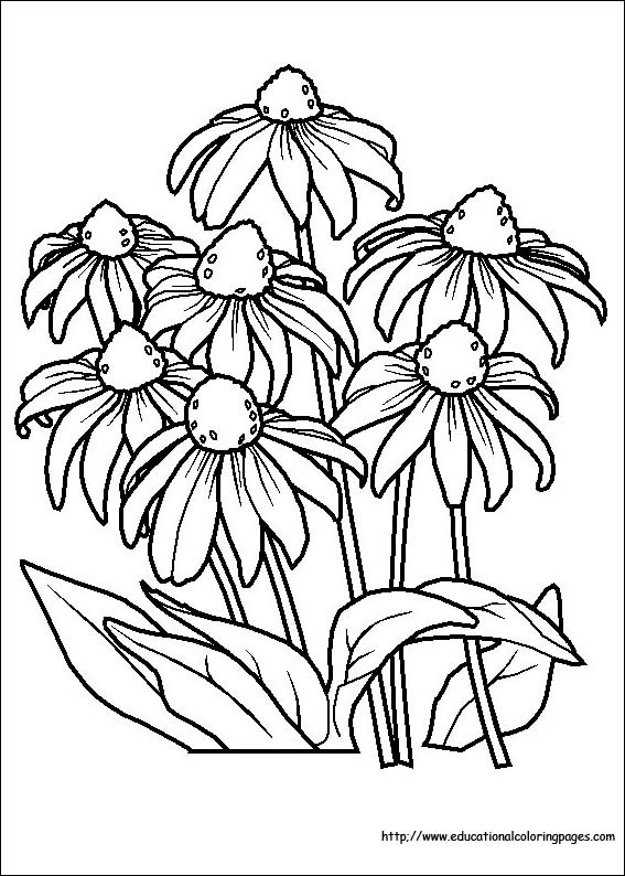Flower Coloring Coloring Pages free For Kids