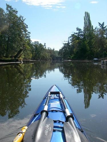 Into Colquitz Creek