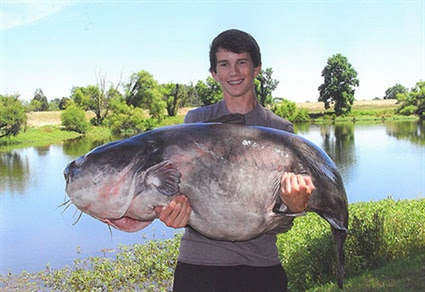 Lake Gaston Yields Third Blue Catfish State Record in Six Months