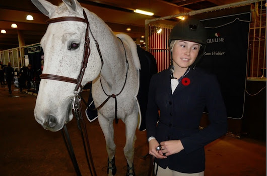 Inside The Horse Palace During The Royal Winter Fair - Toronto Guardian