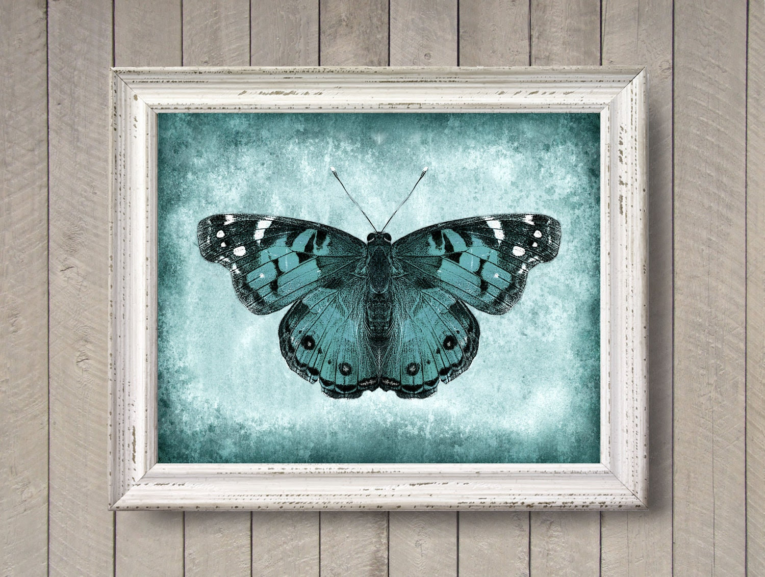 Butterfly in Teal 8x10 photo print Textured Nature by quotograph