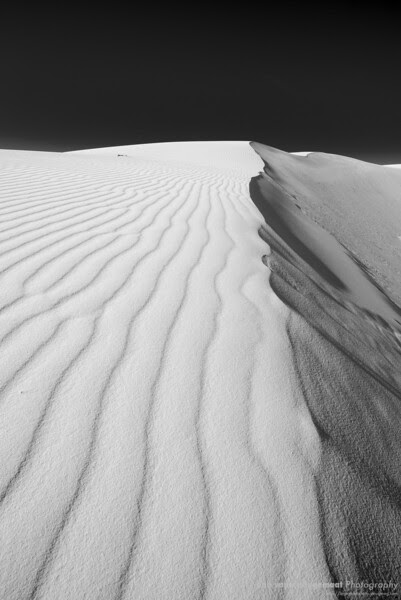 Dune ridgeline