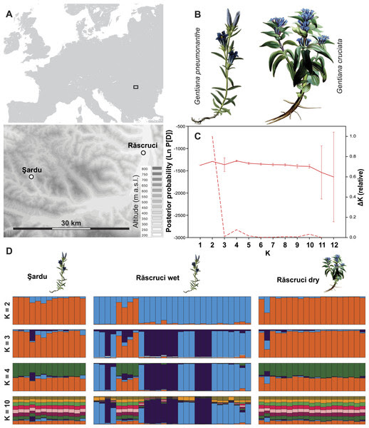 Host plant use drives genetic differentiation in syntopic populations of Maculinea alcon [PeerJ]