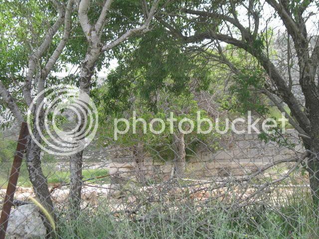 Tel Shiloh Green