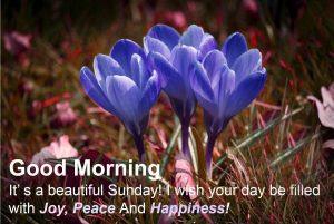 Sunday Good Morning Photo Pics