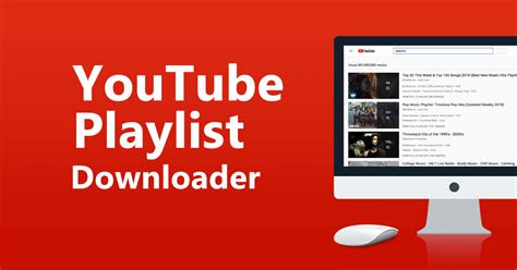 youtube playlist downloader    guide