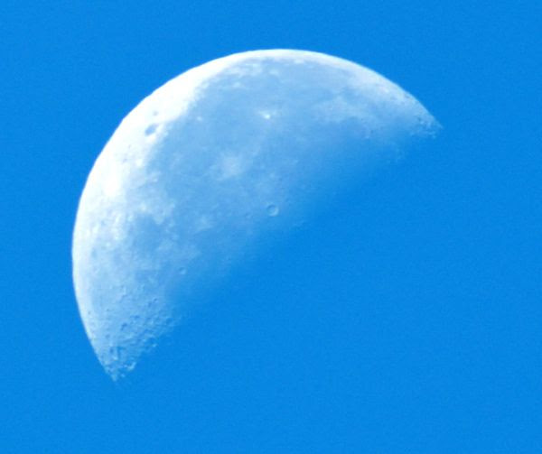 The Half Moon as seen with 500mm super-zoom lens attached to my Nikon D3300 DSLR camera.