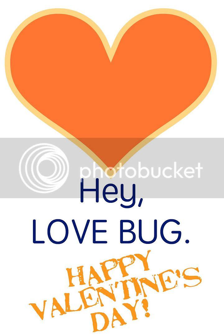 love bug valentine orange and navy photo bug6_zpsnlk0cf0o.jpg