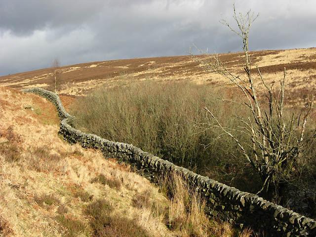 File:A drystane dyke near Little Tarras Water - geograph.org.uk - 683021.jpg