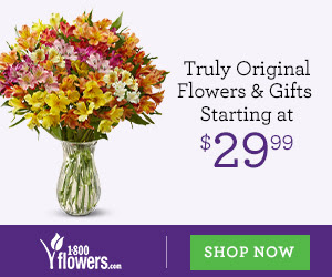 Flowers and Gifts Starting at $29.99 only at 1800flowers.com