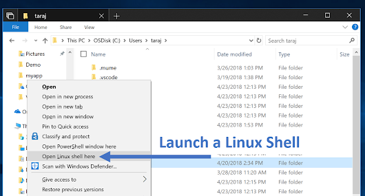 Microsoft Adds More Features to Windows Subsystem for Linux - OMG! Ubuntu!