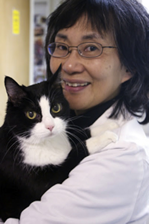 Dr. Susan Chew, DVM - A Caring Vet & Remarkable Woman
