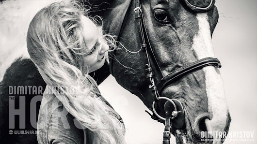 One Day In Heaven – Equestrian photography by Dimitar Hristov