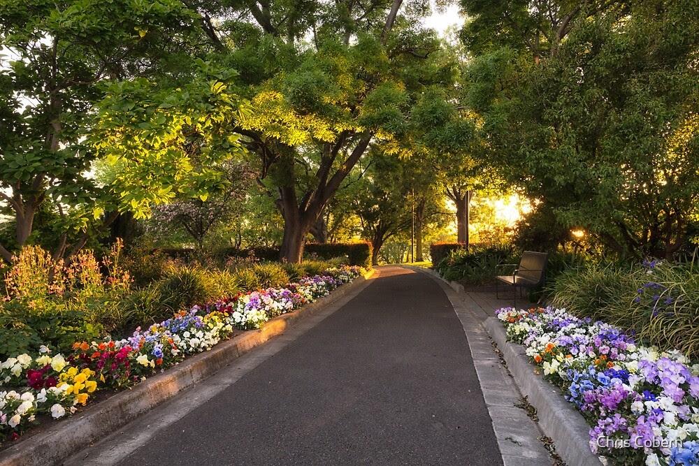 Kết quả hình ảnh cho Princes Park  tasmania