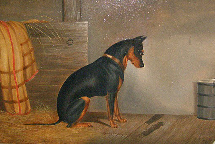 319 Manchester Terriers Exhibition