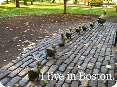 I live in Boston