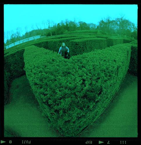 peeping into the maze by pho-Tony