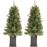 2ct/3.5ft Pre-Lit Slim Artificial Christmas Tree Potted Douglas Fir Clear Lights - Wondershop , Green