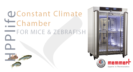 HPPlife: The Constant Climate Chamber for Keeping Mice & Zebrafish - STEQ America