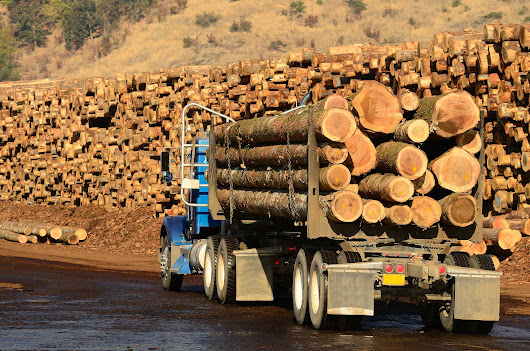 Softwood Lumber Dispute: U.S. Lumber Lobby Launches Petitions