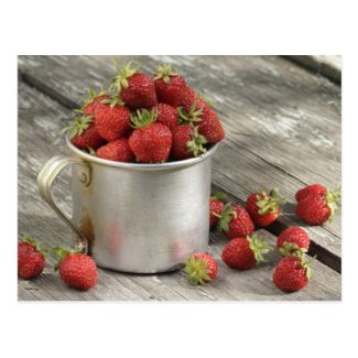 garden strawberries in mug post cards