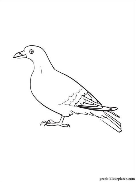 kleurplaat met een duif gratis kleurplaten