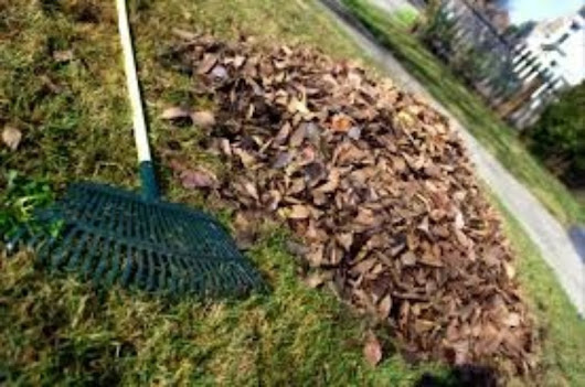 Tools to Make Leaf Clean Up Easier and Affordable - Next Day Dumpsters