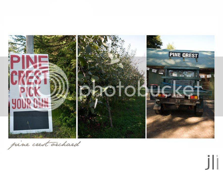 pine crest orchard photo blog-3_zpsa65619d5.jpg