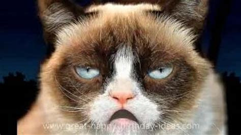 Grumpy Cat Happy Birthday Song. Free Funny Birthday Wishes