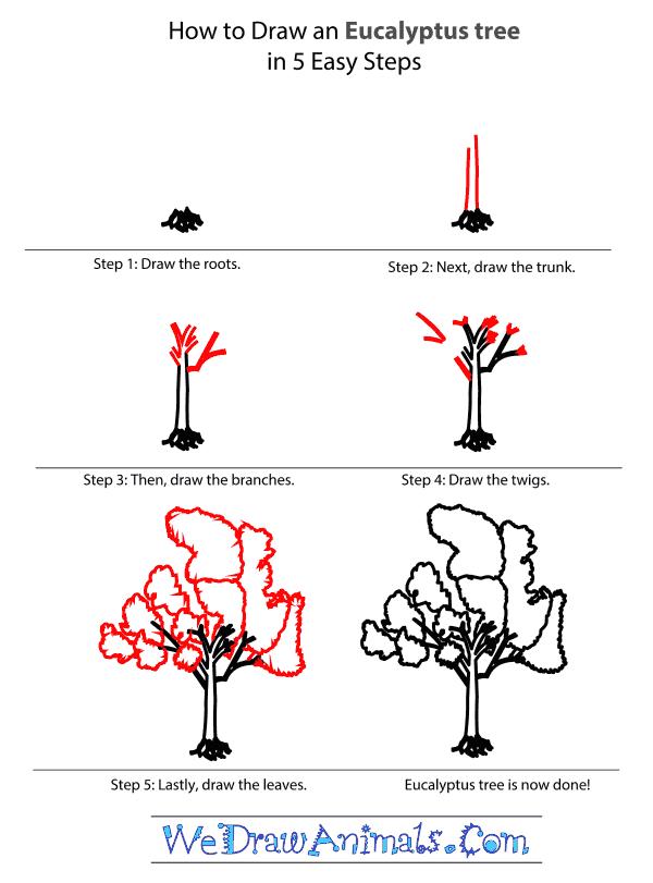 How To Draw A Rainforest Tree : rainforest, Rainforest, Drawing, Ideas