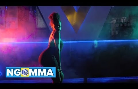 Download or Watch(Official Video) Mak mansa – So fly