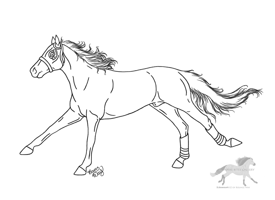 Racehorse Lineart by RejectAll-American on DeviantArt
