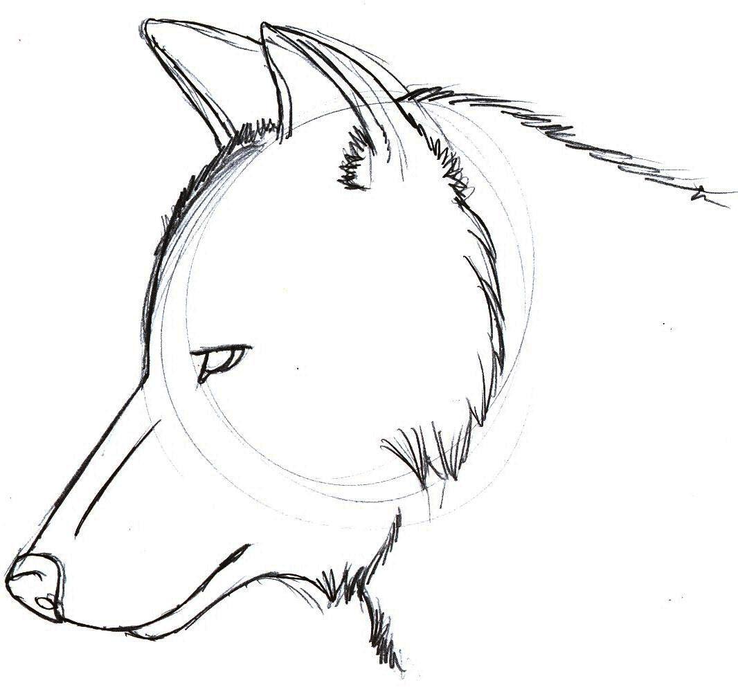 Guía Cómo Hacer Dibujos En Dibujo Tradicional Page 1 Of 1