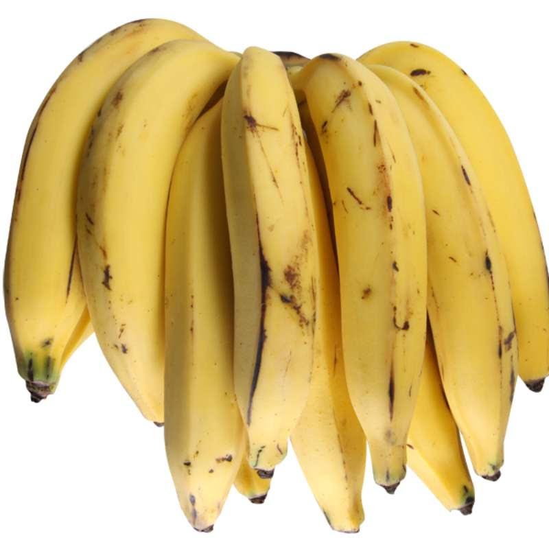 Resultado de imagem para Banana-da-terra