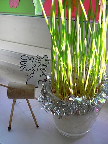 blé 2.jpg