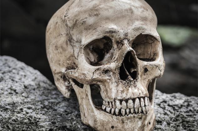 Misteri i paraardhësit të njeriut