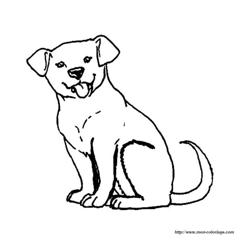 Disegni Da Colorare Di Cani Labrador Fredrotgans