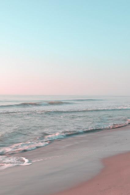 Assateague Beach (7)