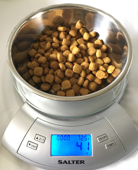 How much is (Really) in your Dog's Food Bowl? - ILoveMyDogMoreThanMyKids